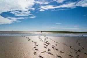 Gezeiten - Fußspuren im Wattenmeer mit Strandspazierern im Hintergrund
