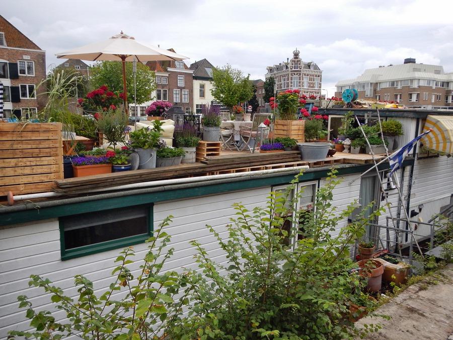 Hausboot in Gracht von Middelburg mit unzähligen Pflanzen