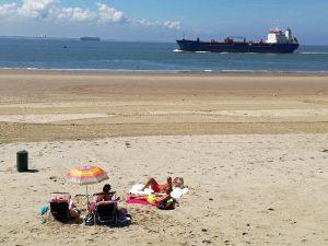 Strand an der Westerschelde